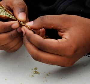 A person rolls a marijuana joint. REUTERS/Brian Snyder