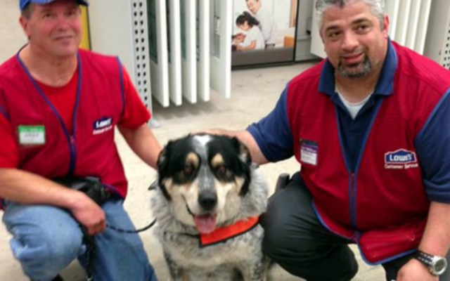 Owen Lima and Blue with a Lowe's customer service representative