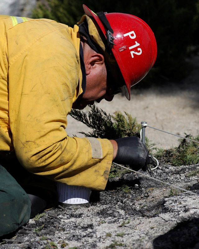 An investigator from the United States Forest Service inspects the fire origin spot during the Wilson Fire near Mount Wilson in the Angeles National Forest in Los Angeles, California, U.S. October 17, 2017. REUTERS/Mario Anzuoni